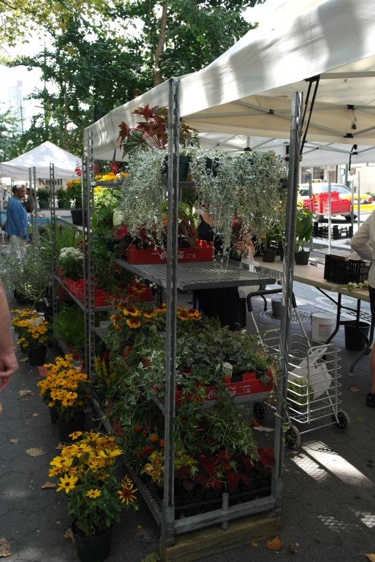 mercado flores nueva york